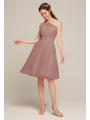 AW Winnie Dress (ready to ship)