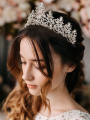 AW Rhinestoned Bridal Silver Tiara